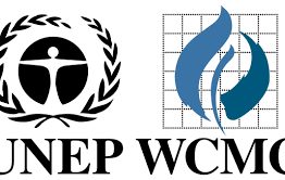 UNEP-WCMC briefing note on EUTR developments