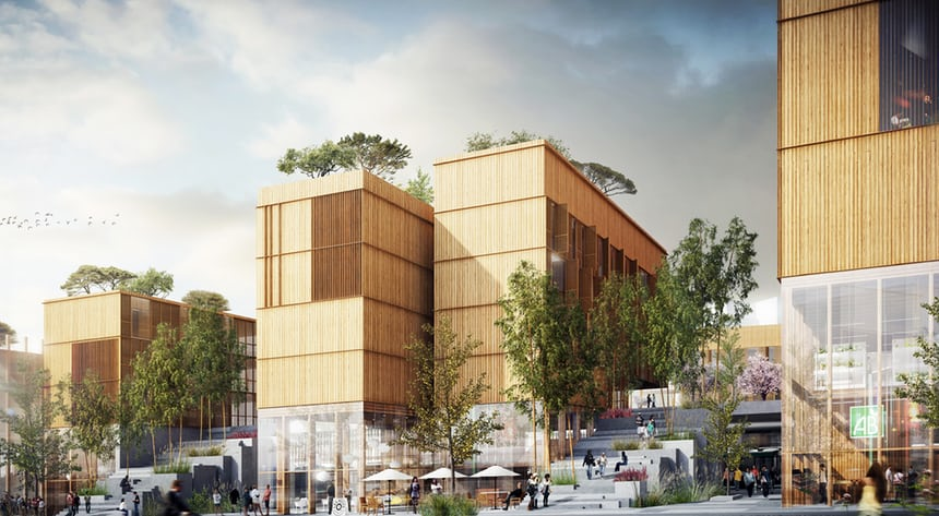 Why wood is back at the top of the tree for architects CLT Andrew Goto